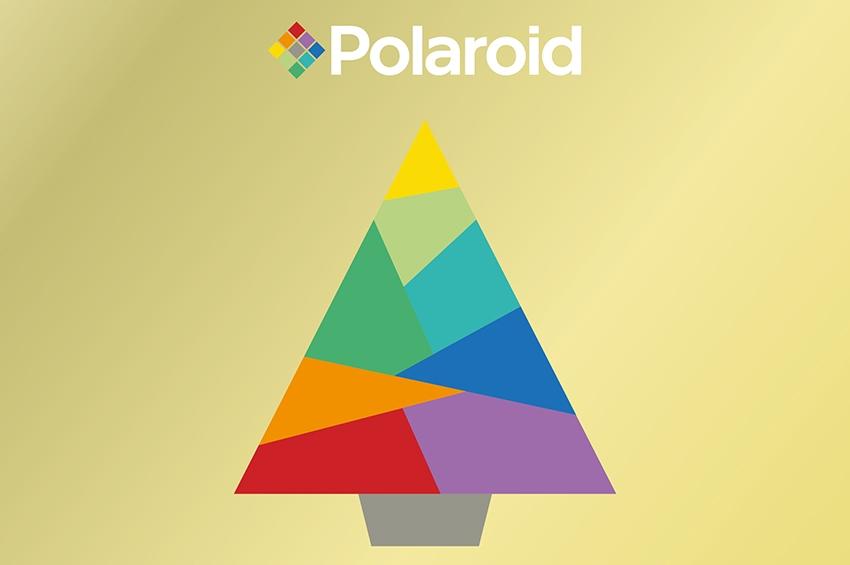 Polaroid Fall/Winter 2019-20 Eyewear Collection